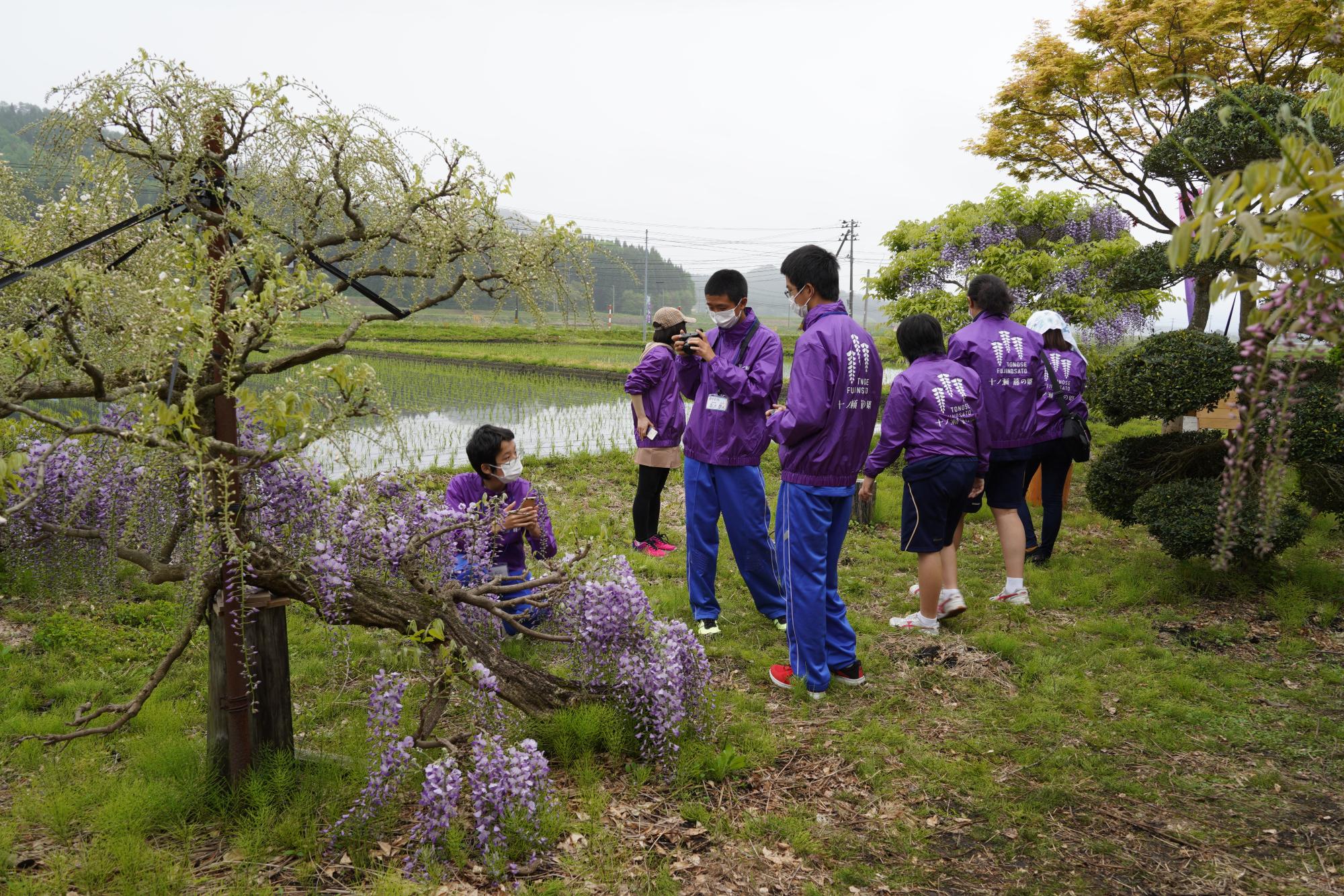 【十ノ瀬 藤の郷2021】職場体験記