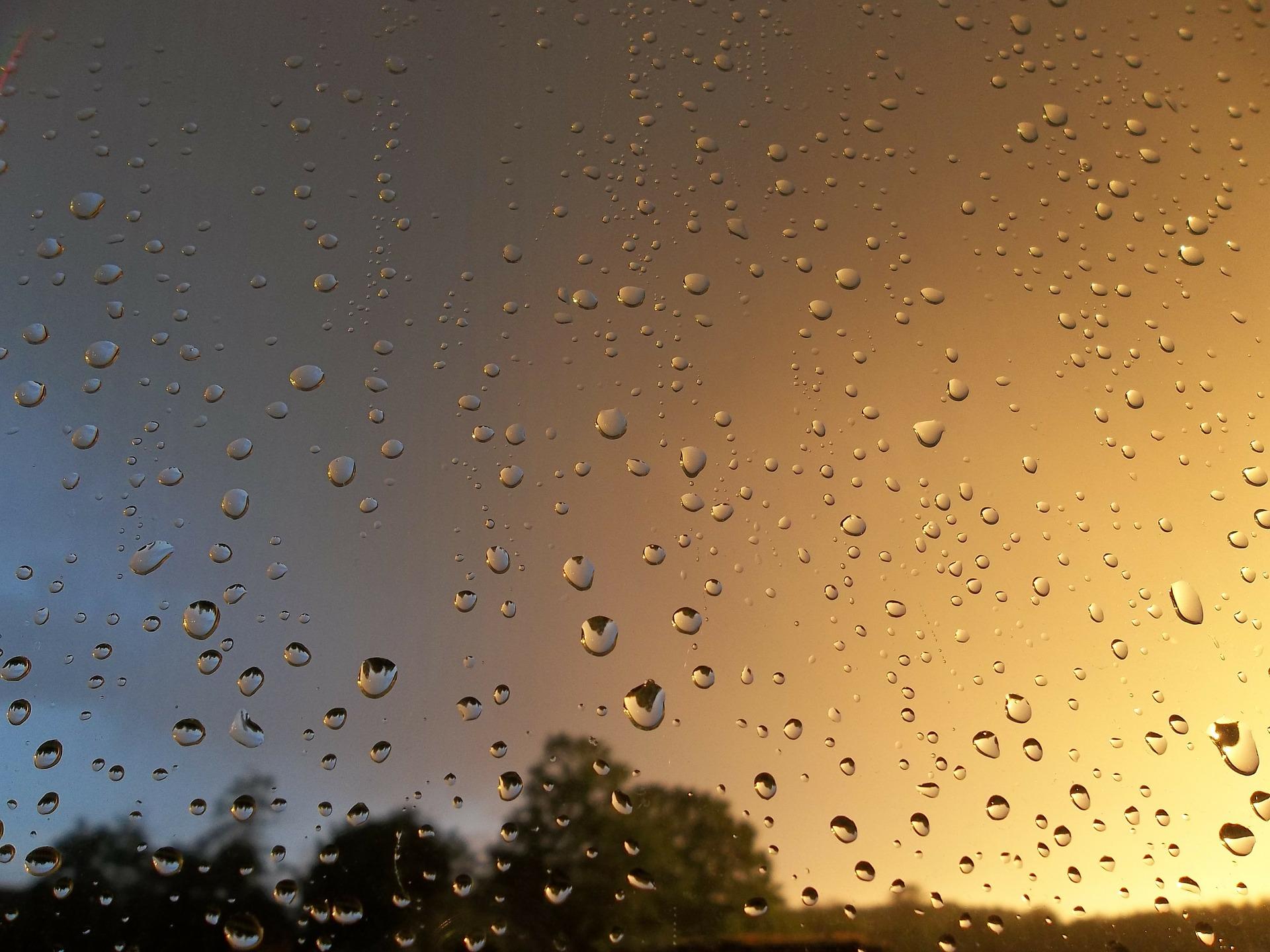 夏の雨の日